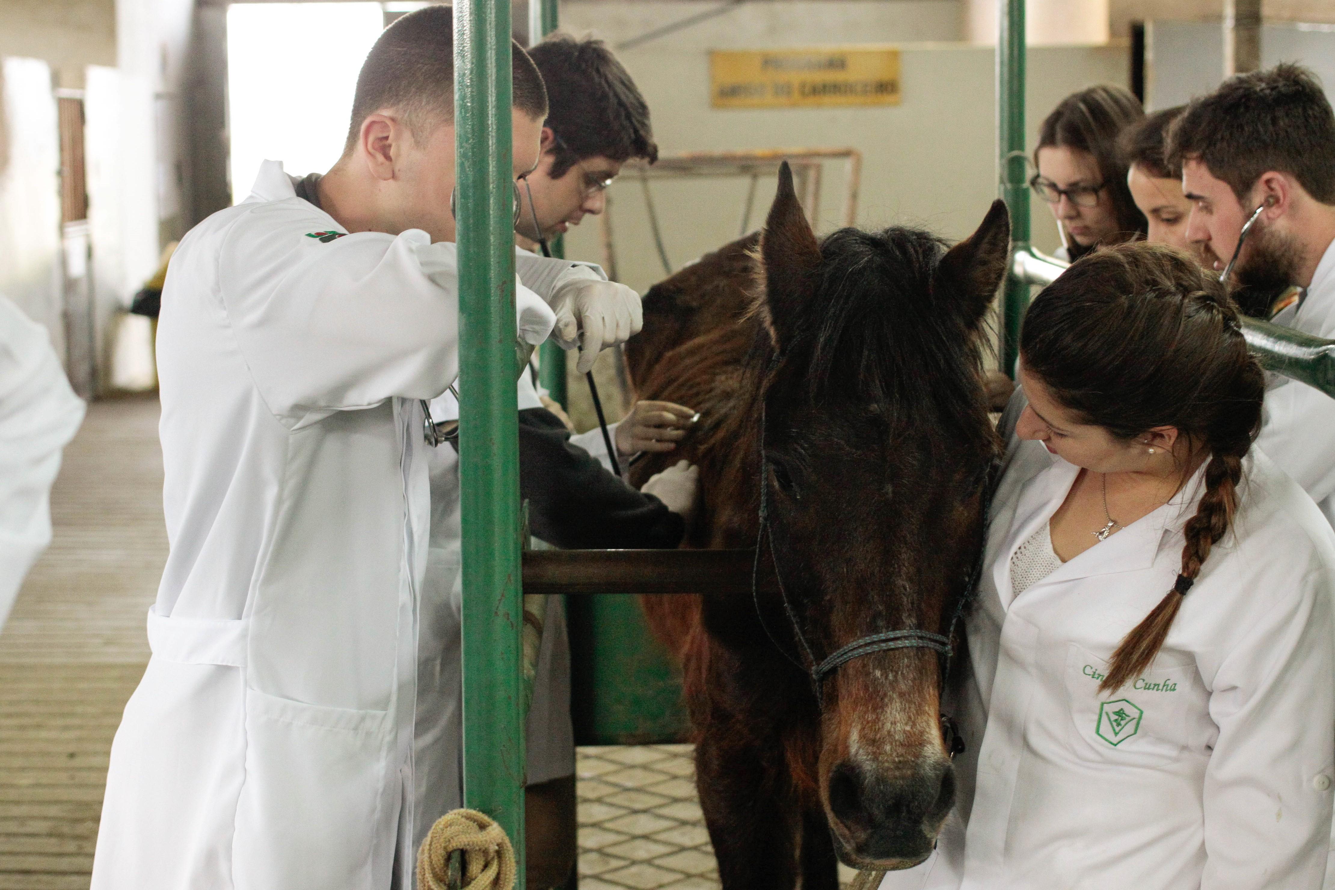 Mestrado e doutorado têm linhas de pesquisa em duas áreas de concentração - Foto: Jonas Pôrto